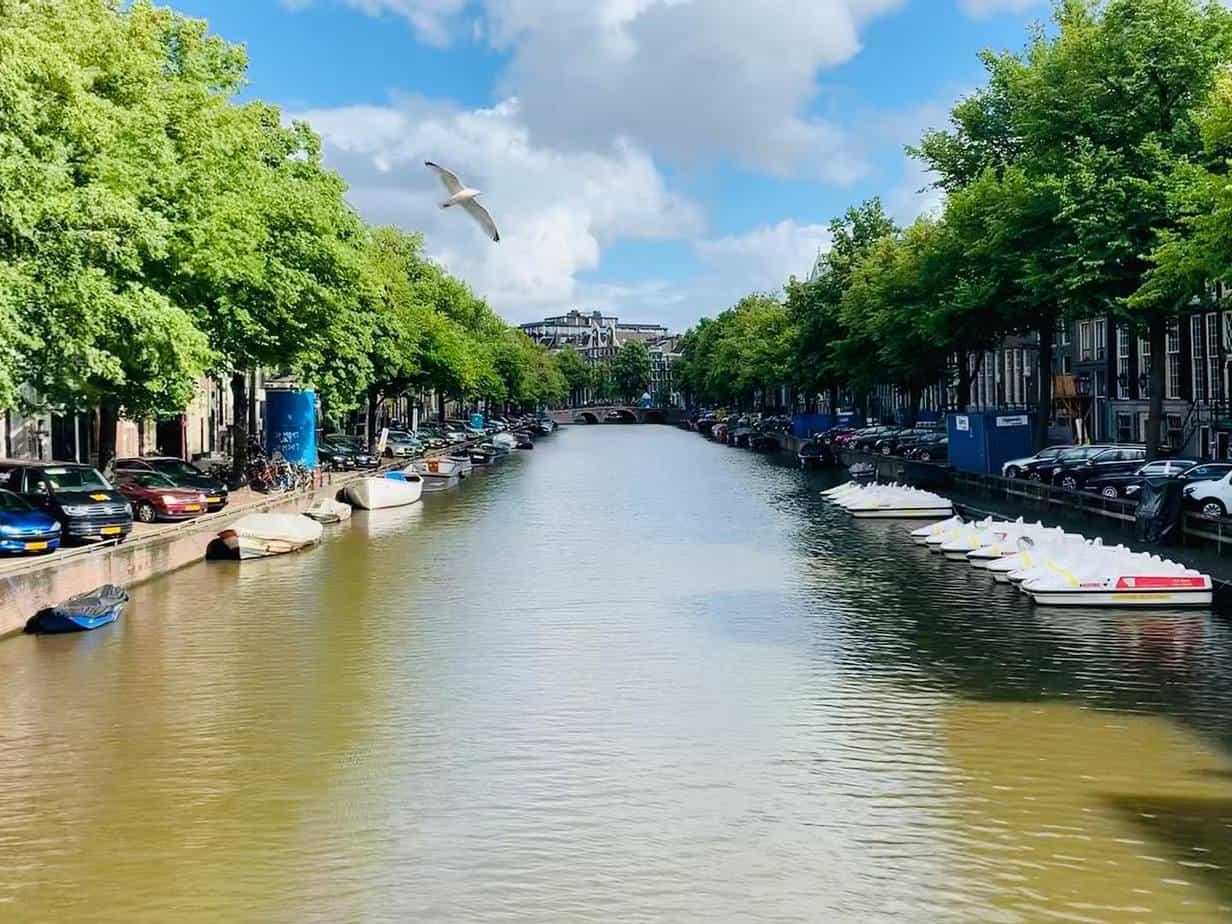Amsterdam Blick auf Gracht
